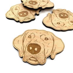 Coasters-Labrador-Adult-2